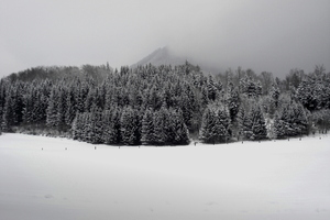 Salzburger Land im Winter
