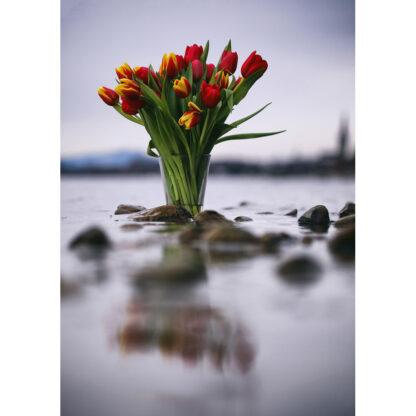 Tulpenvase im Bodensee