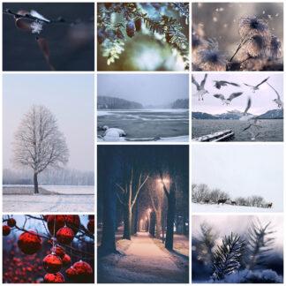 Winter Postkarten
